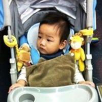 【提前版的聖誕禮物】miYim有機棉推車娃娃_蜜蜂+獅子