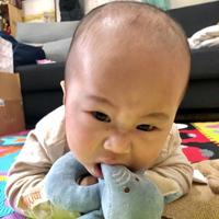 寶寶安撫玩具推薦-miYim有機棉安撫娃娃-吉拿棒 好夢蛙&手搖鈴 芬恩象象,安心陪伴每一刻