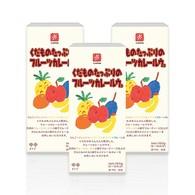 日本CANYON兒童水果咖哩塊150G 3入組